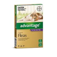 Advantage Purple 4pk Cats over 4kg