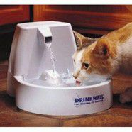Drinkwell pet fountain for cats and small dogs