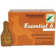 Essential 6 Large Dog 20 - 40kg 4 pack *out of stock*