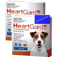 Heartgard Plus Blue 12 pack- Dogs up to 11kg  Monthly Chews for Small Dog
