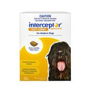 Interceptor Spectrum Yellow Chews 6 Pack - Dogs 11 - 22kg
