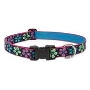 Lupine 12-20  Large Dog Collar Flower Power 1 inch thick, Adjustable 12-20 inches