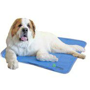 Green Shop Cooling Pet Pad: Extra Large  114 x 70cm *due to popularity..out of stock.  Pre order Now!