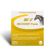 Recovery Paste 250ml