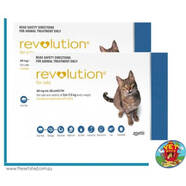 Revolution for Cats 12 pack Blue