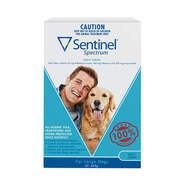 Sentinel Spectrum Blue 3 pack Chews For Large Dogs  23-45kg