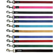 "soft padded nylon leash 3/4"" - sold individually pick colour"