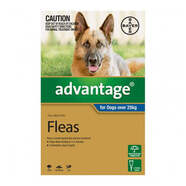 Advantage Blue Single Dogs over 25kg Extra large dogs