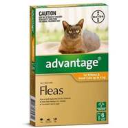 Advantage Small Cats Orange 6 pack Cats up to 4kg