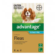 Advantage Aqua Single dose pack for dogs 4-10kg
