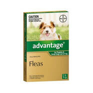 Advantage Green Single Dose for dogs up to 4kg Flea Control