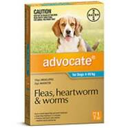 Advocate Medium Dog Aqua SINGLE DOSE Pack for dogs 4 -10kg
