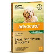 Advocate Small Dog Green SINGLE DOSE Pack for dogs under 4kg
