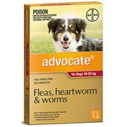 Advocate Large Dog Red SINGLE DOSE pack for dogs 10-25kg