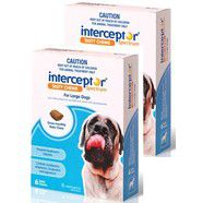 Interceptor Spectrum 12 pack Blue Large Dog 22-45kg Chews