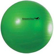 Jolly Pets Horsemans Pride Medium Ball Ball 30""