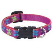 Lupine 8-12 Small Dog Collar Wing It 1/2 inch thick, Adjustable 8-12 inches