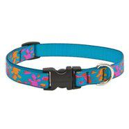 Lupine 13- 22 Medium Dog Collar WET PAINT 3/4 inch thick, Adjustable 13-22 inches