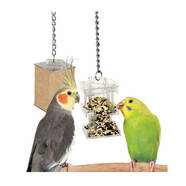 Featherland Paradise Hide Away Foraging Box Feeder  28 x 7cm