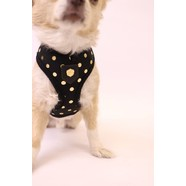 Puppia Luxury Collection Small - Black/Gold *CLEARANCE*