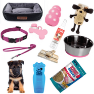 Puppy Pack Pink Medium Deluxe