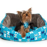 Rogz Trendy Podz Dog bed