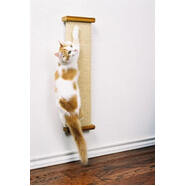 Smart Cat Combination Scratcher 61L x 18W x 6D