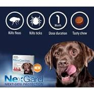 Nexgard - Flea and tick control how it works and its advantages